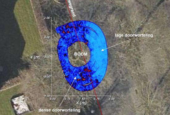 3D scan van de ondergrond voor opzoeking boomwortels